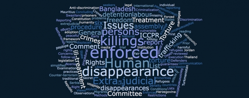Report of the 119th session of the UN Human Rights Committee