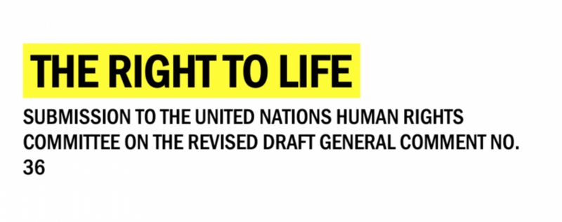 Start of the second reading of General Comment no. 36 on the Right to Life