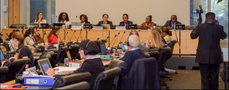 Les élections en République Démocratique du Congo: une priorité pour le Comité des droits de l'homme