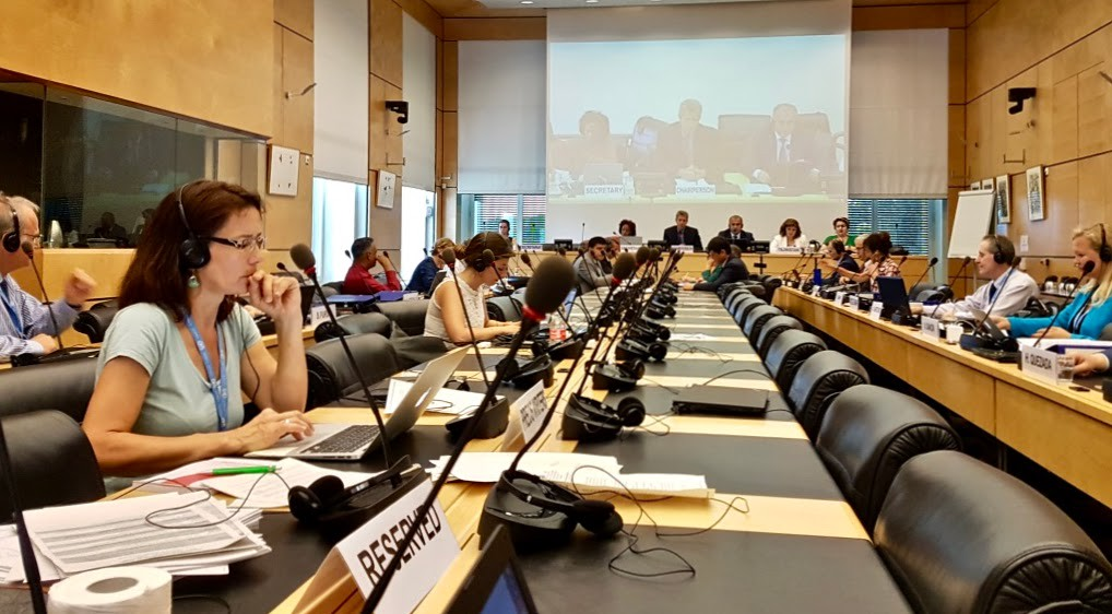 The UN Human Rights Committee - A Year In Review 2019