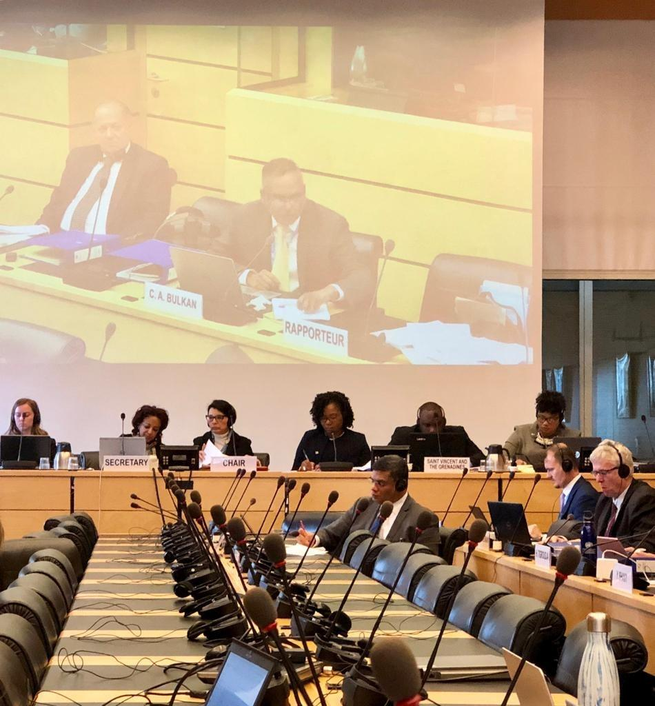 Saint Vincent and the Grenadines: Committee concerned about violence, discrimination and sexual exploitation of children