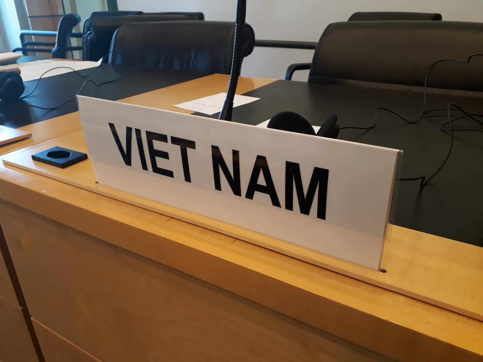 Viet Nam: Concerns over the lack of information on the ICCPR implementation in practice and restriction of fundamental freedoms